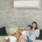 Tính năng ưu việt của máy lạnh Daikin Inverter