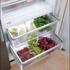Vi khuẩn chỉ ngủ đông trong tủ lạnh, sua tu lanh, sửa tủ lạnh